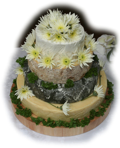 Cheese Wedding Cake Examples 3